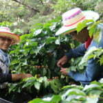 Blog-Kolumbien