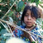 Kinderarbeit-Blog