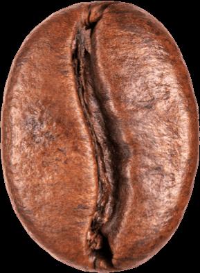 kaffe-bohne